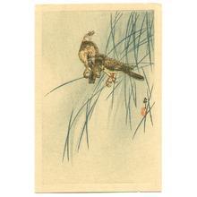 Ohara Koson: Two Birds - Artelino