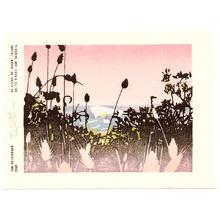 Tom Kristensen: 36 Views of Green Island - 15 - Artelino