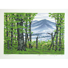 北岡文雄: Japanese Beech Mountain - Artelino