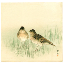 静湖: Two Birds in the Grass - Artelino