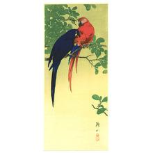 Ito Sozan: Two Macaws - Artelino