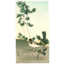 Yoshimoto Gesso: Bird and Pine Trees - Artelino