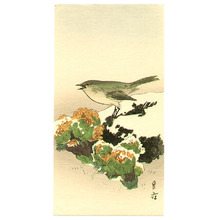 Yoshimoto Gesso: Bush Warbler and Amur Adonises - Artelino