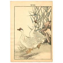 今尾景年: Two Ducks - Keinen Gafu - Artelino