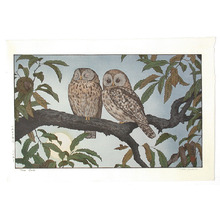 Yoshida Toshi: Two Owls - Artelino