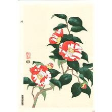 Ito Nisaburo: Camellia - Artelino