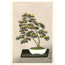 Ito Nisaburo: Bonsai Chrysanthemum (right panel) - Artelino