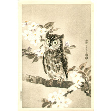 Kotozuka Eiichi: Owl and Cherry Blossoms - Artelino