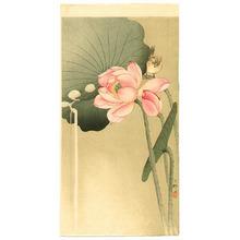 Ohara Koson: Songbird and Lotus - Artelino
