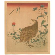 Kitao Masayoshi: Quail - Artelino