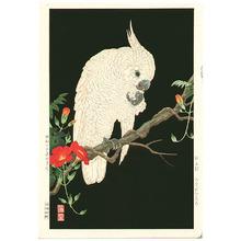 Nishimura Hodo: Cockatoo - Artelino
