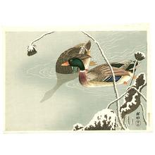 小原古邨: Mallard and Lotus - Artelino
