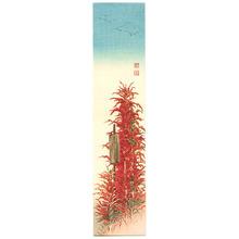 Koho: Red Plant - Artelino