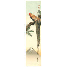 古峰: Long Tailed Rooster - Artelino