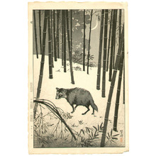 笠松紫浪: Raccoon Dog - Artelino