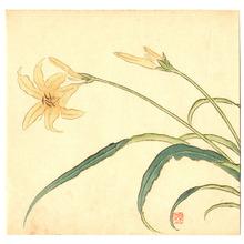Imao Keinen: Yellow Lilies - Artelino