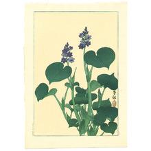 小原古邨: Purple Flowering Hosta - Artelino