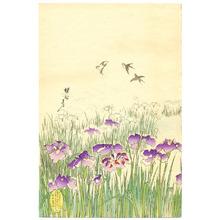 Toyohara Chikanobu: Iris Garden - Ladies of Chiyoda Palace - Artelino