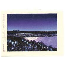 Tom Kristensen: 36 Views of Green Island - 12 - Artelino