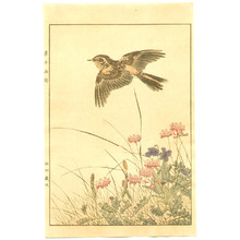 Imao Keinen: Bird, Spring Flowers and Plants - Artelino