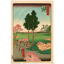 歌川広重: Meisho Edo Hyakkei - Higurashi no sato Suwanodai - Artelino