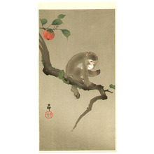 小原古邨: Monkey and Persimmon - Artelino
