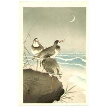 小原古邨: Three Plovers and Crescent Moon - Artelino