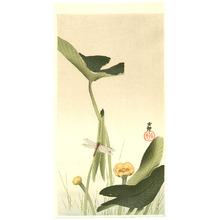 小原古邨: Dragonfly and Lotus - Artelino