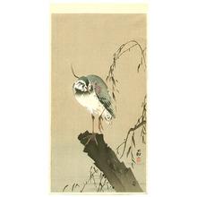 小原古邨: Lapwing on Tree Stump - Artelino