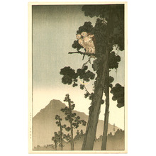 Yoshimoto Gesso: Owl in the Evening - Artelino