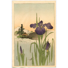 Yoshimoto Gesso: Iris on the Riverside - Artelino