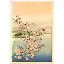 Yoshimoto Gesso: Cherry Trees above the Water - Artelino