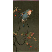 Watanabe Seitei: Blue Birds at Night - Artelino