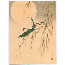 Watanabe Seitei: Praying Mantis and the Moon - Artelino