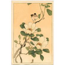 Yoshimoto Gesso: Bird and Magnolia - Artelino
