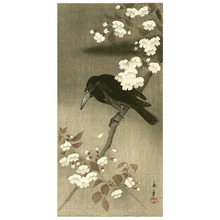 今尾景年: Crow and Cherry Blossoms - Artelino