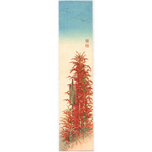 古峰: Red Amaranth - Artelino