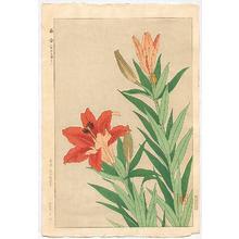Kawarazaki Shodo: Tiger Lily - Artelino