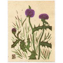 川上澄生: Thistle - Sosaku Hanga Flowers - Artelino