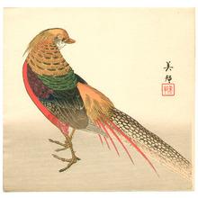 Hirose Biho: Chinese Pheasant - Artelino