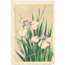 Kawarazaki Shodo: White Iris - Artelino