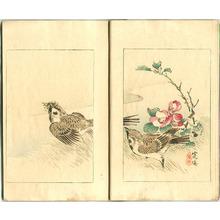 Watanabe Seitei: World of Art - Bijutsu Sekai Vol.5 - Artelino