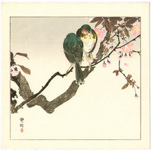 静湖: Two Green Birds on Cherry Tree - Artelino