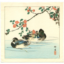 月岡耕漁: Two Mallard Ducks in Water - Artelino