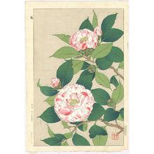 Kawarazaki Shodo: Camellia - Artelino