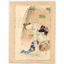 Mishima Shoso: Beauty near a Waterfall - Artelino