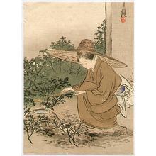 尾形月耕: Bijin Preparing Tea Ceremony - Artelino