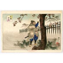 Toyohara Chikanobu: Writing On a Cherry Tree - Artelino