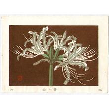 前田政雄: White Flower - Artelino