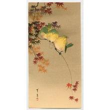 Watanabe Seitei: Green Birds on Maple - Artelino